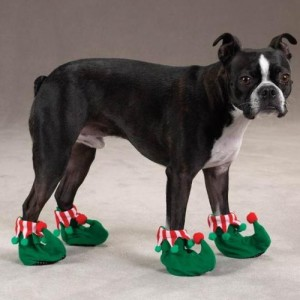dog shoes fun holiday dog slipers santa christmas